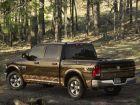 2014 Dodge Ram 1500 Mossy Oak