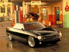 2003 Ford Forty-Nine