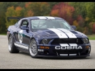 2006 Ford Mustang FR500-GT