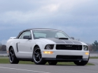 2006 Ford Mustang GT Project
