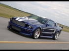 2006 Ford Mustang GT Shadrach