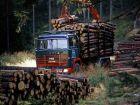1968 Scania LBT140 Timber Truck